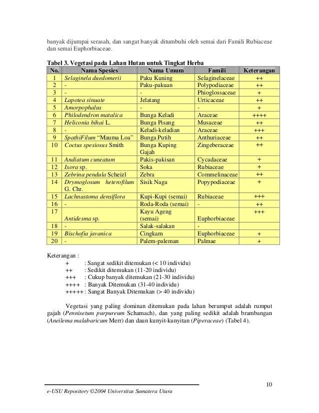 banyak dijumpai serasah, dan sangat banyak ditumbuhi oleh semai dari Famili Rubiaceae dan semai Euphorbiaceae. Tabel 3. Ve...