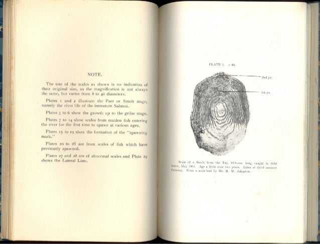 Salmon Scale Examination and its Practical Utility - J Arthur Hutton, Published in 1910 (pictures only).
