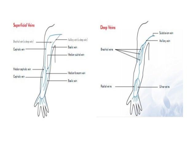 HUYẾT KHỐI TĨNH MẠCH NÔNG • Viêm tắc huyết khối tĩnh mạch nông ( superficial thrombophlebitis) hay viêm tĩnh mạch : viêm v...