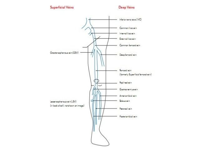 HUYẾT KHỐI TĨNH MẠCH SÂU • Deep vein thrombosis DVT : huyết khối tạo ra ở các tĩnh mạch lớn, không ảnh hưởng đến các tĩnh ...