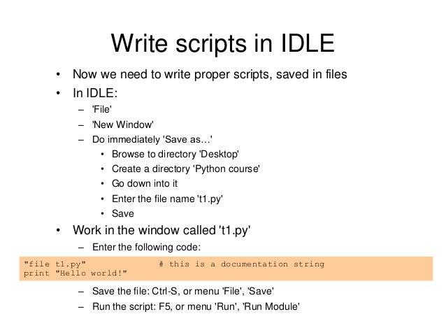 write a python script windows