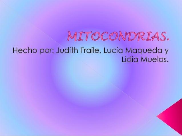 Índice:  ¿Qué son?  Función de las mitocondrias.  Estructura de las mitocondrias.