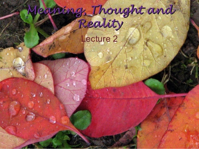 Meaning, Thought andMeaning, Thought andRealityRealityLecture 2