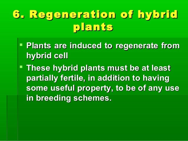 6. Regeneration of hybrid6. Regeneration of hybrid plantsplants  Plants are induced to regenerate fromPlants are induced ...