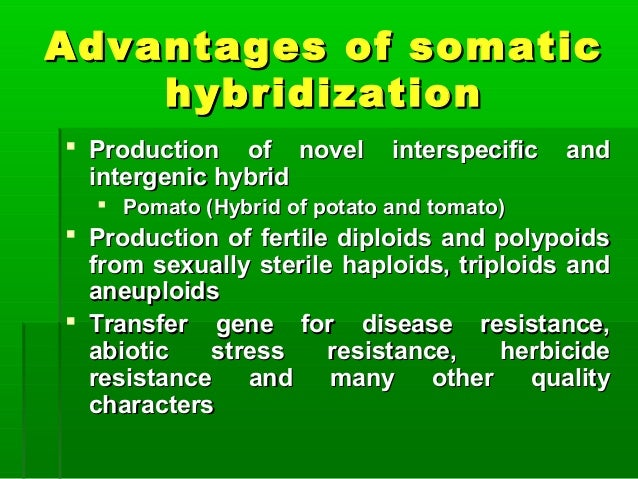 Advantages of somaticAdvantages of somatic hybridizationhybridization  Production of novel interspecific andProduction of...