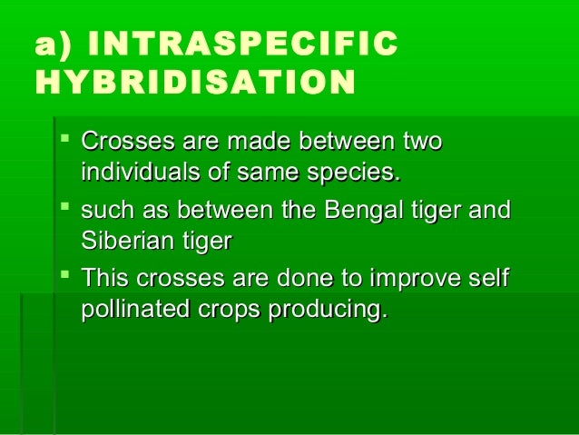 a) INTRASPECIFIC HYBRIDISATION  Crosses are made between twoCrosses are made between two individuals of same species.indi...