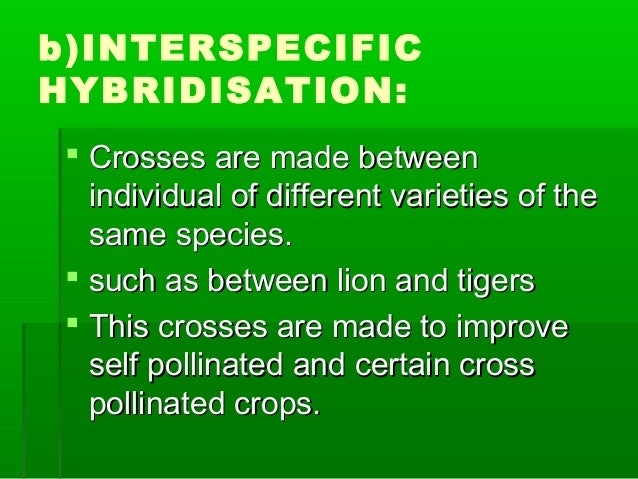 b)INTERSPECIFIC HYBRIDISATION:  Crosses are made betweenCrosses are made between individual of different varieties of the...