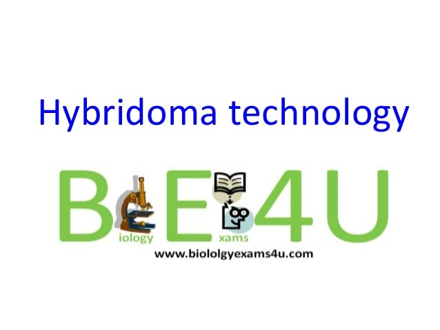 hybridoma technology Creative biolabs provides professional service of human antibody production using transgenic mice/rats by hybridoma technique.