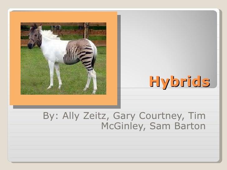 Hybrids By: Ally Zeitz, Gary Courtney, Tim McGinley, Sam Barton