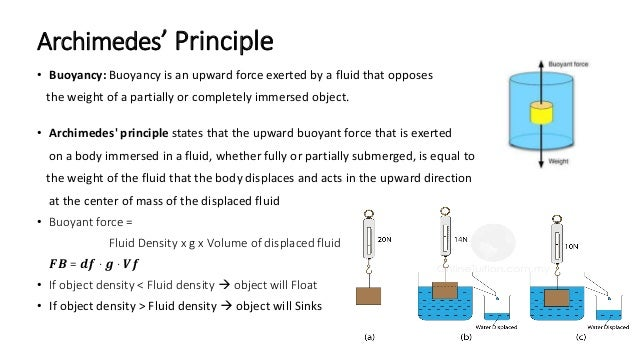 Archimedes' Principle • Buoyancy: Buoyancy is an upward force exerted by a fluid that opposes the weight of a partially or...
