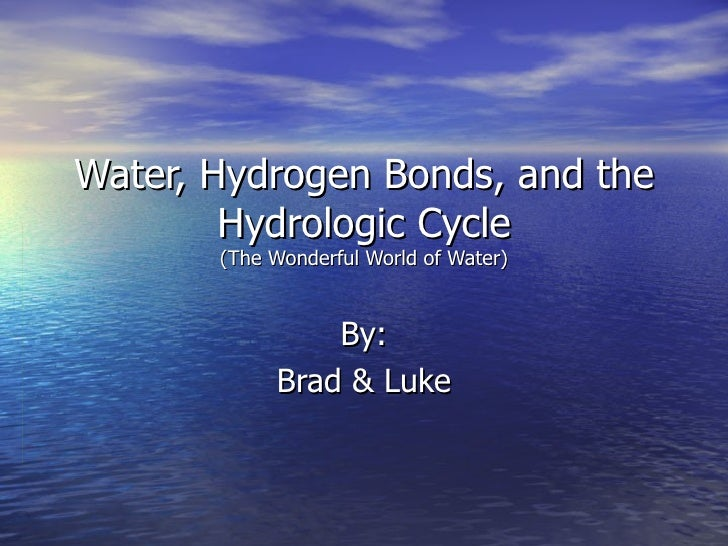 Water, Hydrogen Bonds, and the Hydrologic Cycle (The Wonderful World of Water) By: Brad & Luke