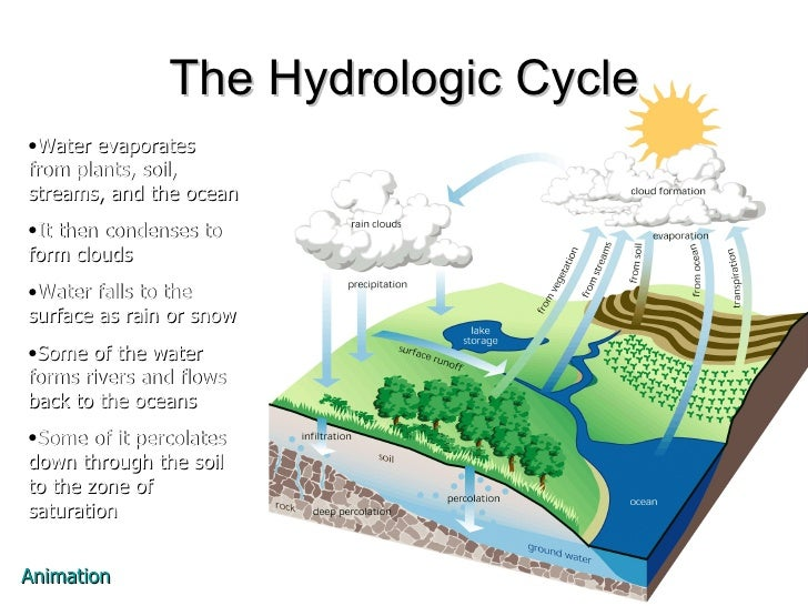 11 The Hydrologic Cycle