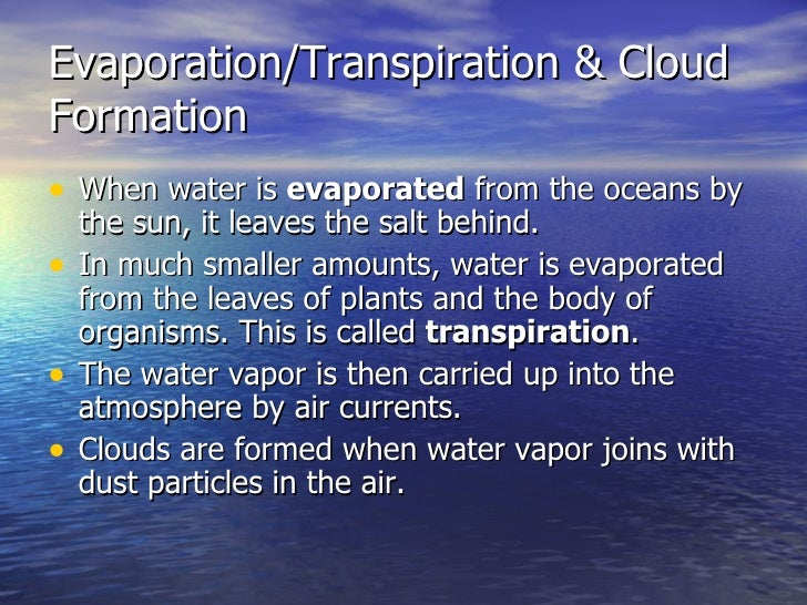 Water Hydrogen Bonds And The Hydrologic Cycle