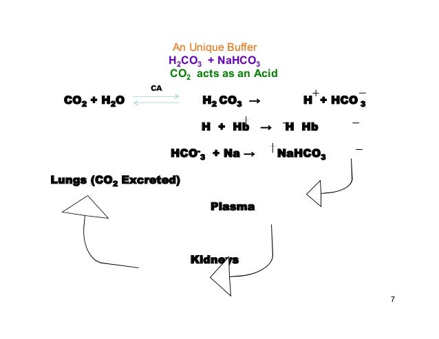 Acid Base Balance, a clinical application