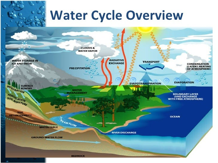 Water Cycle: The Hydrologic Cycle