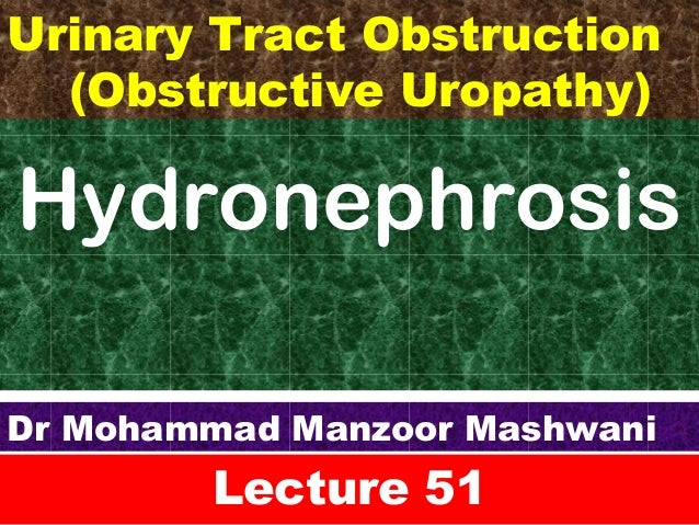 Hydronephrosis Lecture 51 Dr Mohammad Manzoor Mashwani Urinary Tract Obstruction (Obstructive Uropathy)