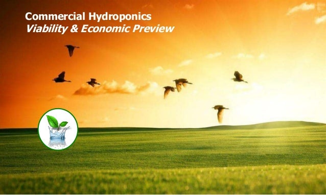 Copyright of ISH, India Commercial Hydroponics Viability & Economic Preview