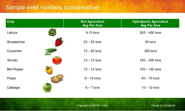 Hydroponics an explosive fact of our times for Soil meaning in hindi