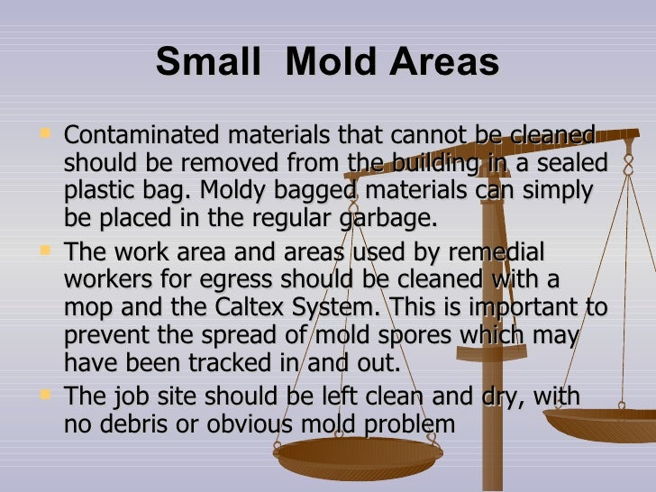 Small  Mold Areas <ul><li>Contaminated materials that cannot be cleaned should be removed from the building in a sealed pl...