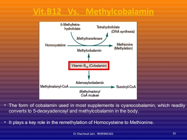 HYPERHOMOCYSTIENEMIA IN PREGNANCY AND LACTATION AND ROLE