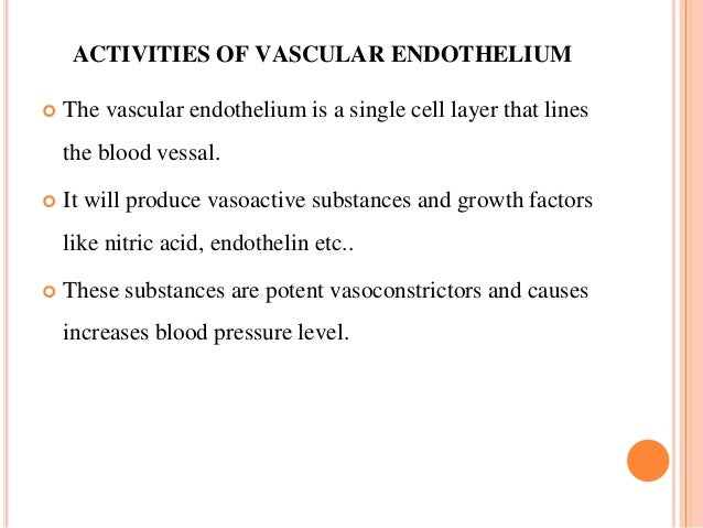 ACTIVITIES OF VASCULAR ENDOTHELIUM  The vascular endothelium is a single cell layer that lines the blood vessal.  It wil...