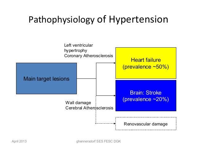pathophysiology of hypertension