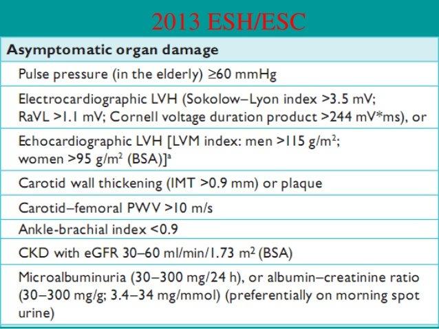 2013 ESH/ESC