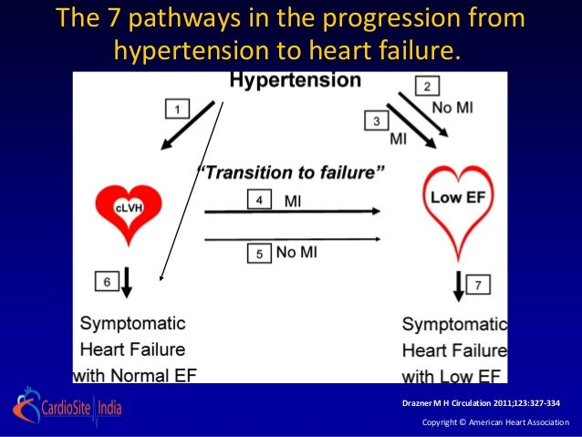 The 7 pathways in the progression from    hypertension to heart failure.                            Drazner M H Circulatio...