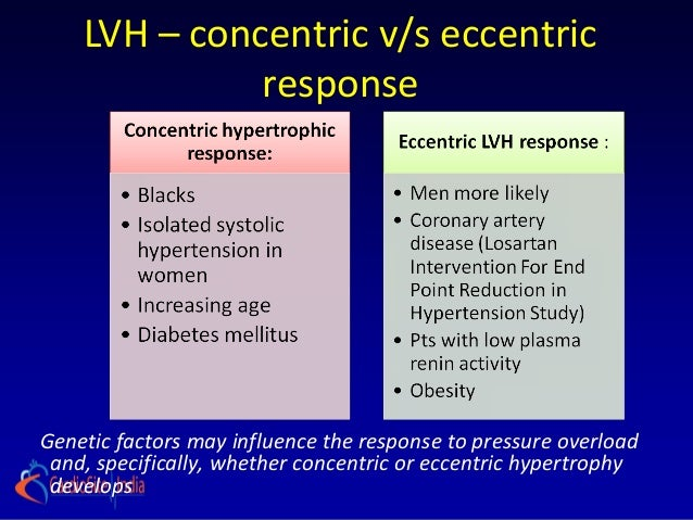 LVH – concentric v/s eccentric              responseGenetic factors may influence the response to pressure overload and, s...