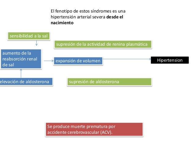 Hipertension_Guia de practica clinica