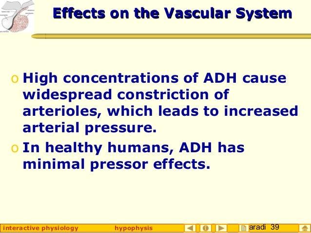 Taradi 39interactive physiology hypophysis Effects on the Vascular SystemEffects on the Vascular System o High concentrati...