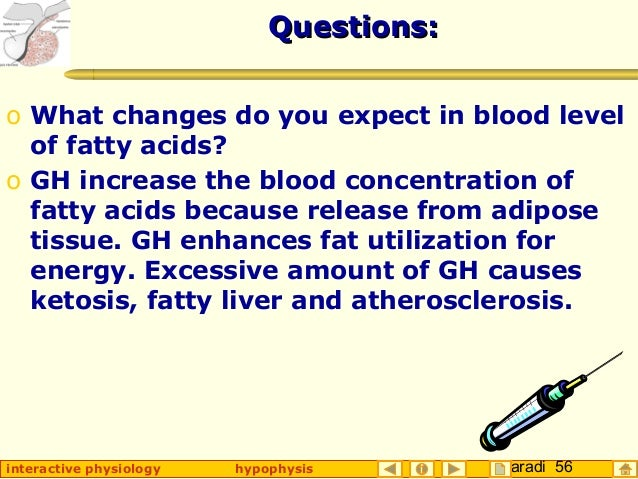 Taradi 56interactive physiology hypophysis Questions:Questions: o What changes do you expect in blood level of fatty acids...