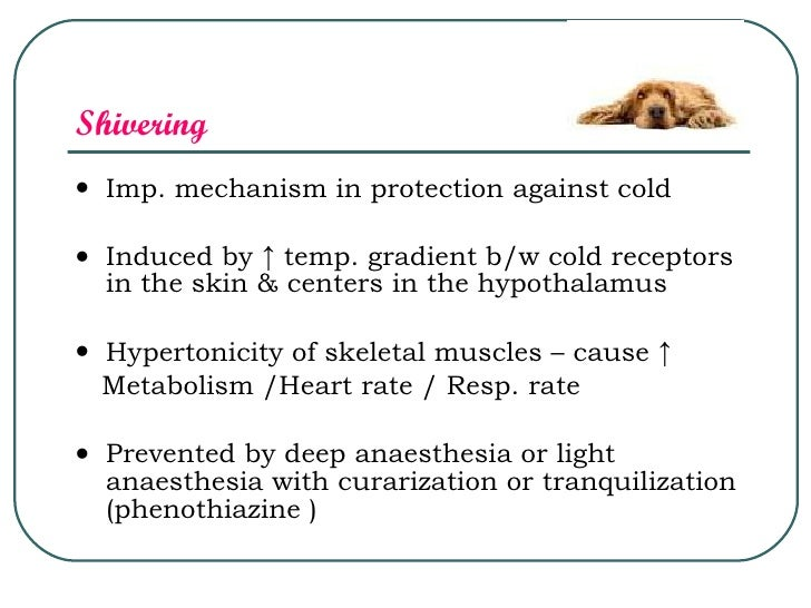 Hypothermia, Electro Anesthesia & Acu puncture ,DR.MUDASIR ...