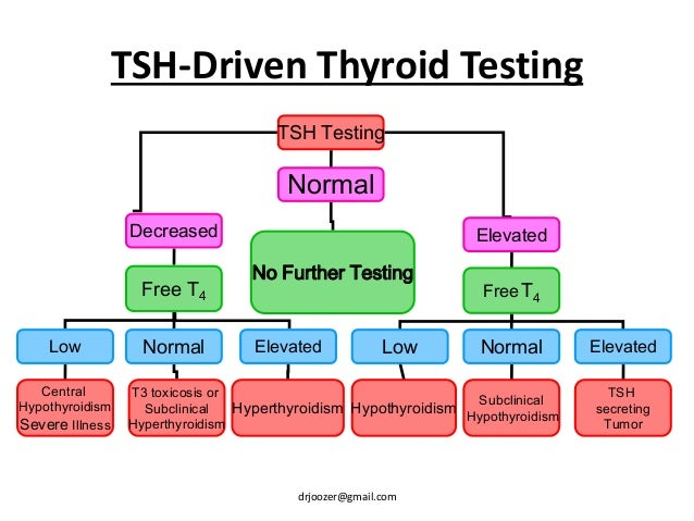 Subclinical Hyperthyroidism Symptoms | Hyperthyroid Symptoms