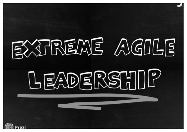Extreme agile leadership - Ansätze für kooperative Führung in einer agilen Organisation