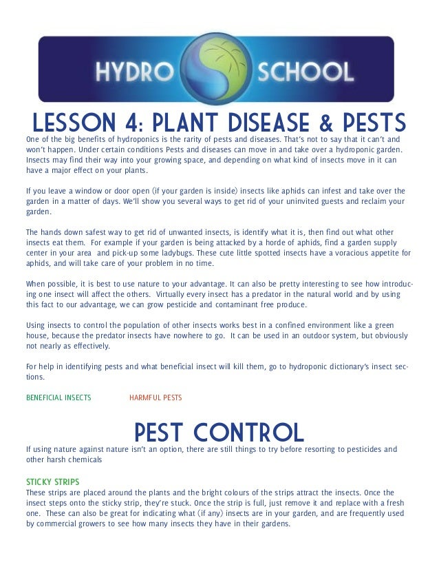 Hydroponics School Lesson Plan 4 - Pests and Disease