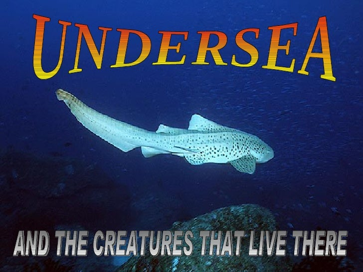 UNDERSEA AND THE CREATURES THAT LIVE THERE