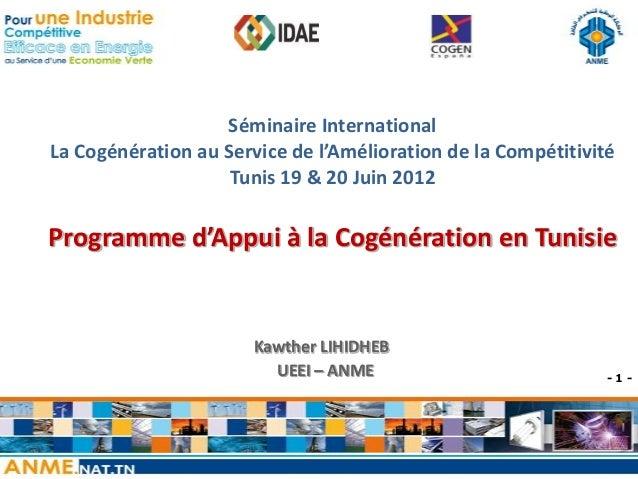 ANME_Programme d'appui à la cogénération en Tunisie