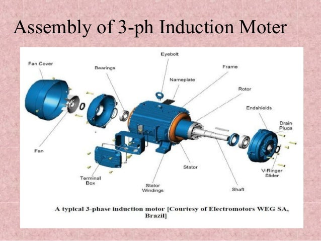 Induction motor three phase for Three phase induction motor