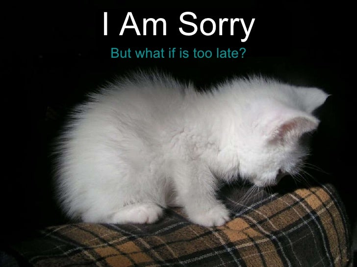 I Am Sorry But what if is too late?