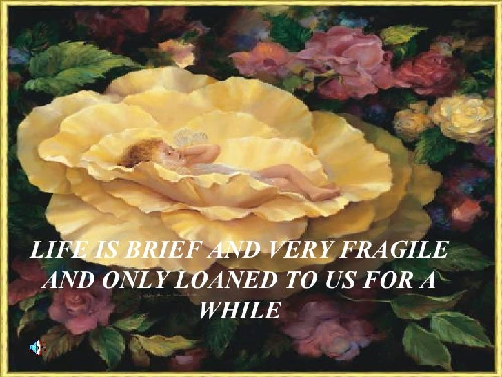 LIFE IS BRIEF AND VERY FRAGILE AND ONLY LOANED TO US FOR A WHILE