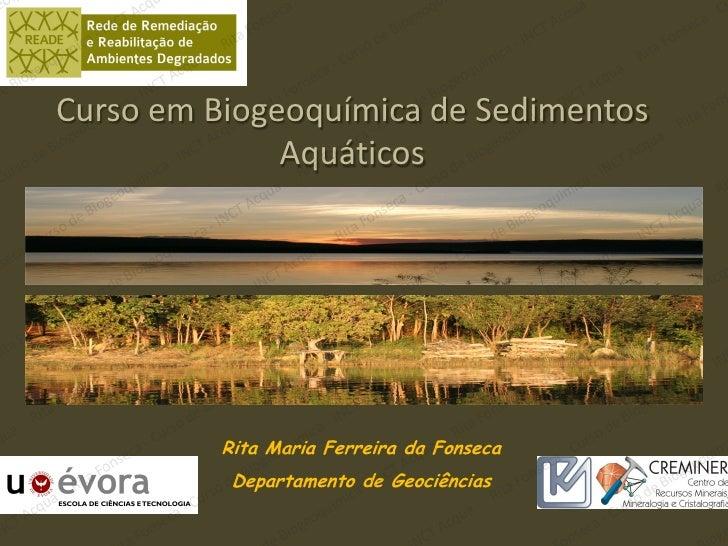 Curso em Biogeoquímica de Sedimentos              Aquáticos          Rita Maria Ferreira da Fonseca           Departamento...