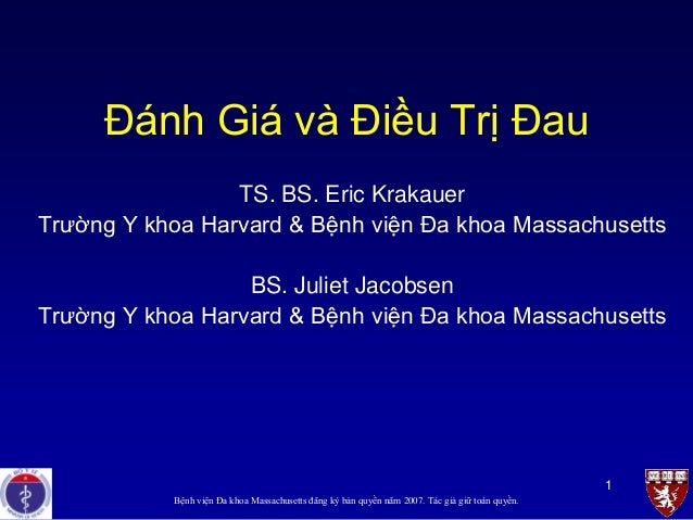 1 Đánh Giá và Điều Trị Đau TS. BS. Eric Krakauer Trường Y khoa Harvard & Bệnh viện Đa khoa Massachusetts BS. Juliet Jacobs...