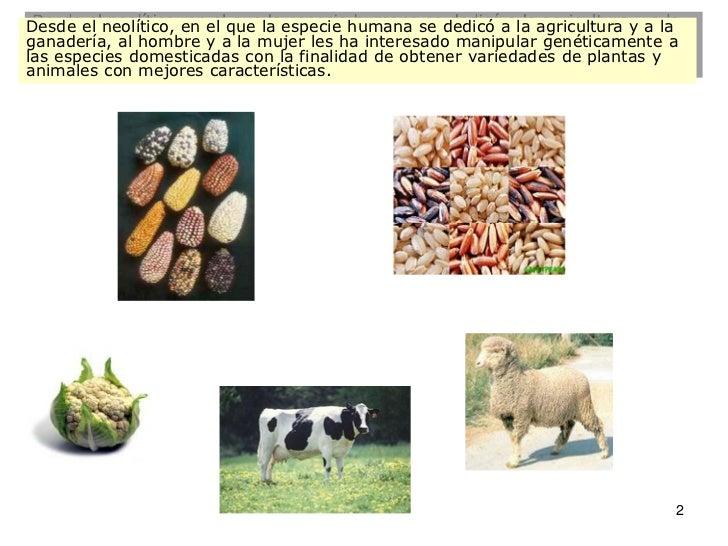 I12 gen apli_pdf1 Slide 2