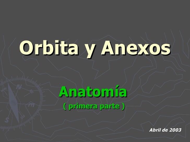 Orbita y Anexos Anatomía   ( primera parte )  Abril de 2003