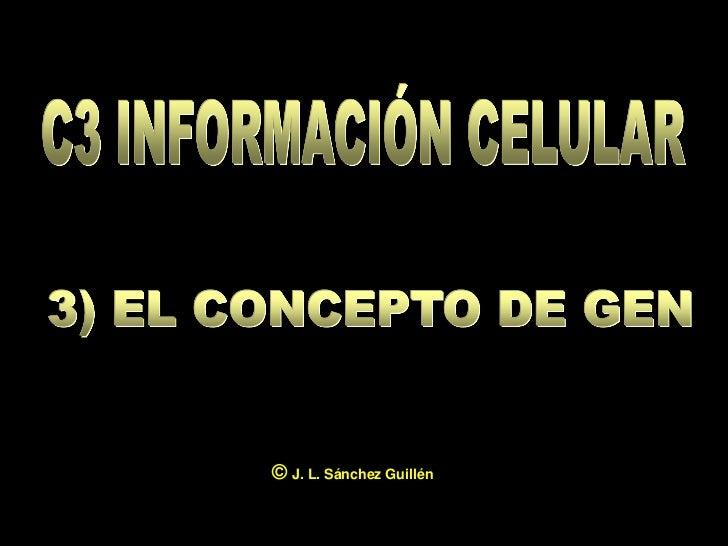 © J. L. Sánchez Guillén                          1