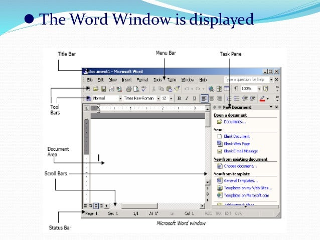 Computer software application with specific reference to microsoft wo the word window is displayed ccuart Images