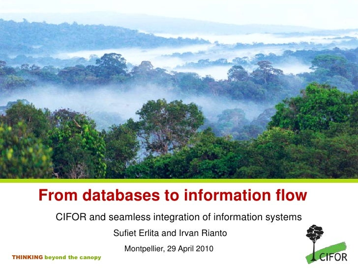 From databases to information flow             CIFOR and seamless integration of information systems                      ...