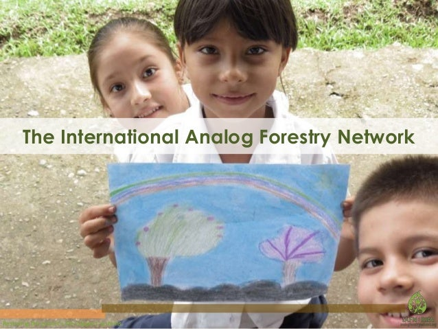 The International Analog Forestry Network  Restoring the planet's life-support systems.