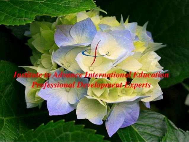 Institute to Advance International Education Professional Development Experts